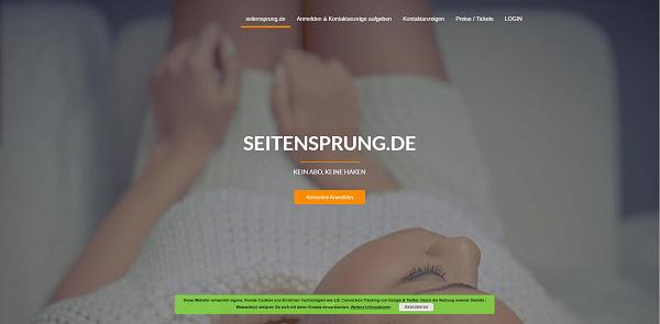 Seitensprung.de Pros und Contras