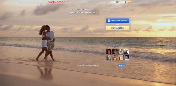 web-amor Pros und Contras